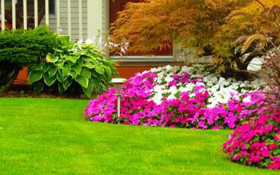 Welcome to Rolling Hills Nursery & Landscaping!